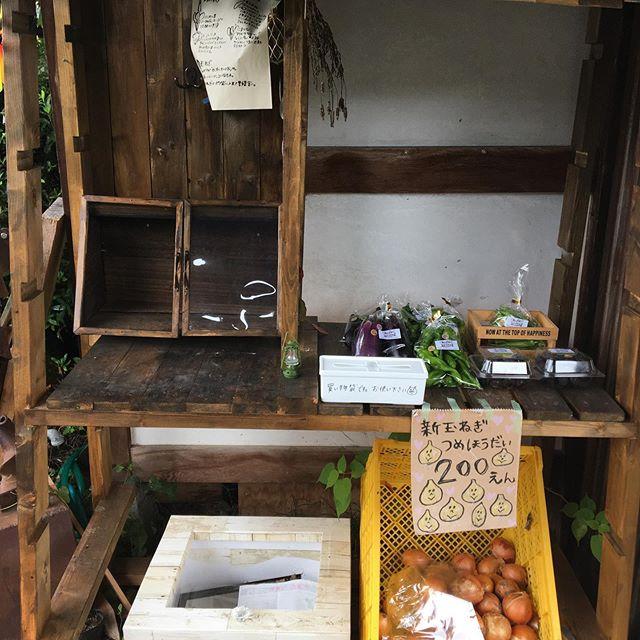 ちょっとさみしい感じですが久し振りにえばこごはんさんに野菜持っていきました。秋に向けてハウスの片付けや種まき、昨日は芽キャベツの定植しました。急に夜はタオルケットでも寒いくらい。秋ですね〜。 #畑#田舎#田舎暮らし#専業農家#とっとり#鳥取市#移住#農業女子#野菜#野菜販売#旬#農業#就農#やさい#地方発送#kushi#kushitani