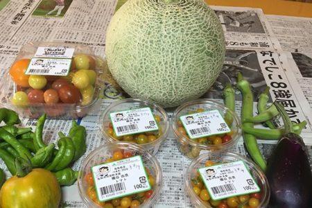 だんだんバテてきたのか、野菜たち。トマトのおかげでジャングルハウスになりつつある中、見た目100点メロン。メロンのプロからしたらまだまだだと思いますが、私はわくわくしています。ただいつパカっと切ってよいのかわかりません。#畑#田舎#田舎暮らし#専業農家#とっとり#鳥取市#移住#農業女子#野菜#野菜販売#旬#農業#就農#やさい#地方発送#kushi#kushitani#めろん#めろん食べ時わからん#マイクロトマトがんばれ#グリーントマトどうしたらよいですか